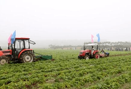 崔永辉:打造农业新优势 再创农业新辉煌