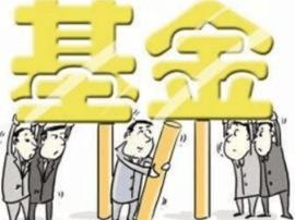 平陆审计局专项审计新型农村合作医疗基金