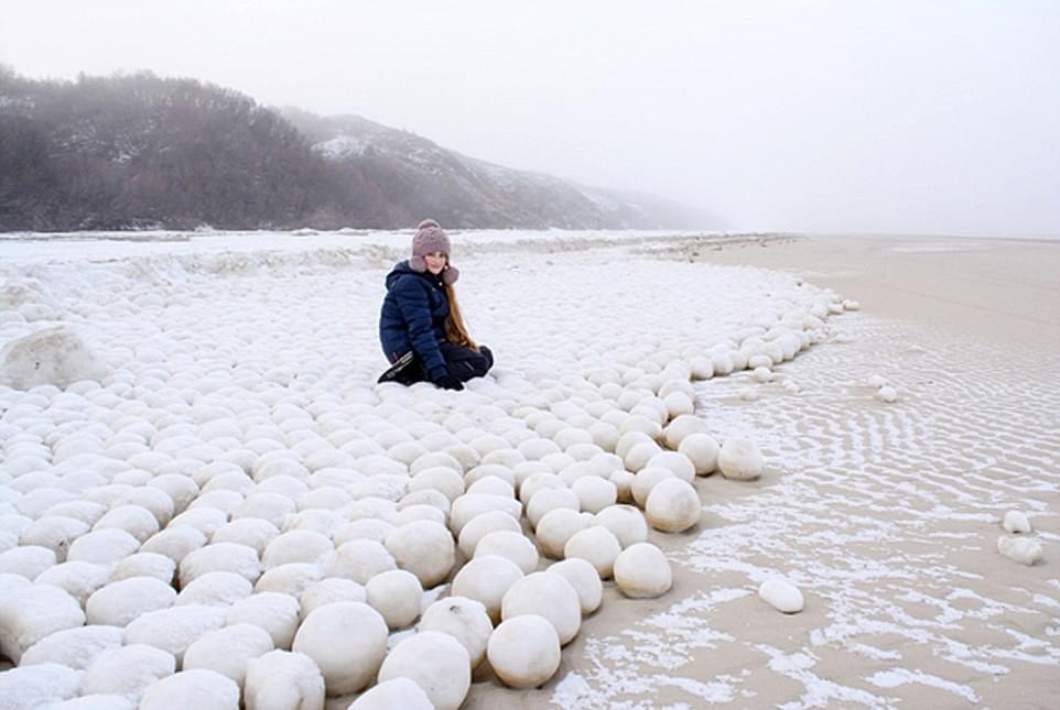 俄罗斯海滩出现大片巨型雪球,太超自然了!