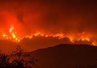 2017全球气候的这五大变化,预示环境危机或将来