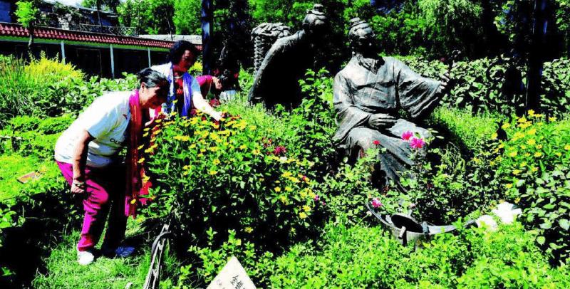 南寨公园百草园内各类中草药植物吸引市民