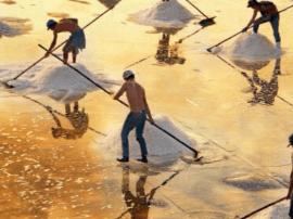 盐改周年观察:盐改释放盐业活力 地方保护亟待破除