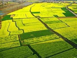 海盐近四年下拨基本农田保护补偿金近8000万元