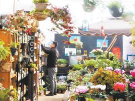 长治市绿植园花卉市场内生意红火