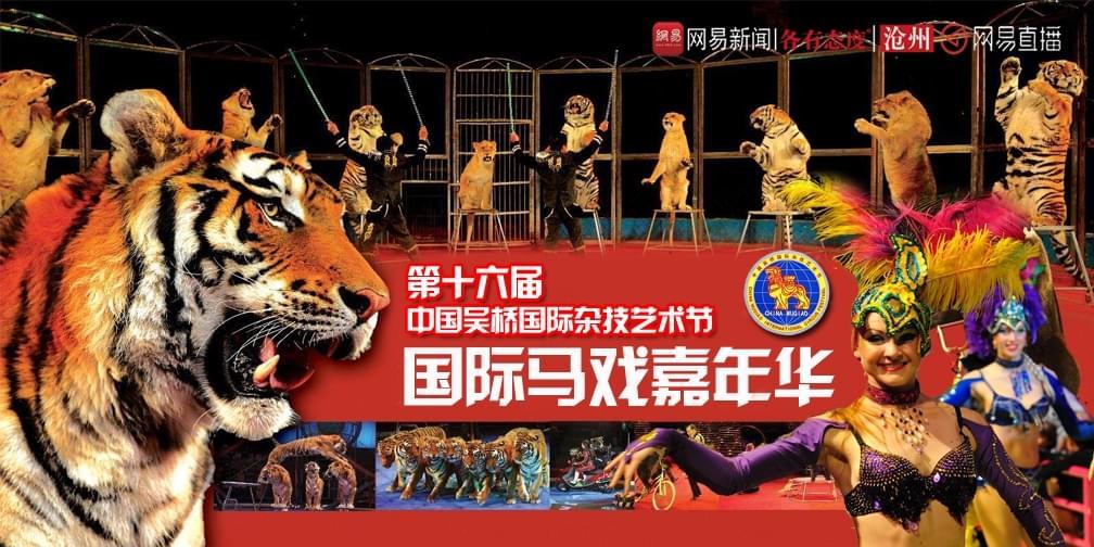 """相约沧州动物园 看现实版""""美女与野兽"""""""