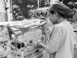 二胎时代|三水一个月收治30多名危重新生儿