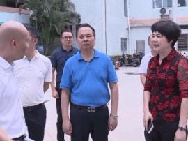 省卫计委调研阳江市基层医疗服务能力