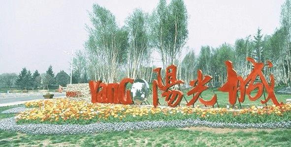 """阳光城董秘:我们不是""""小碧桂园"""""""
