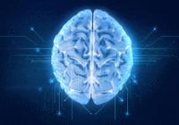 入侵大脑?科学家称可通过大脑控制肢体动作