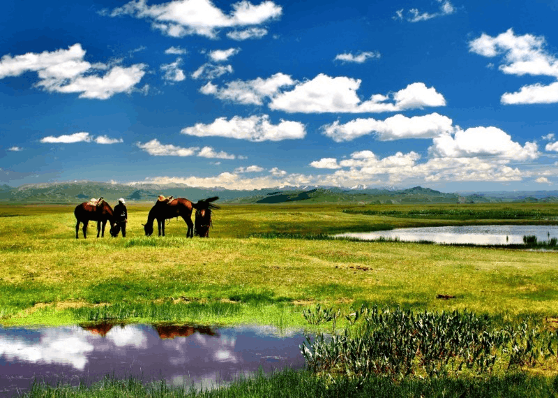 那拉提,生灵栖息的天堂