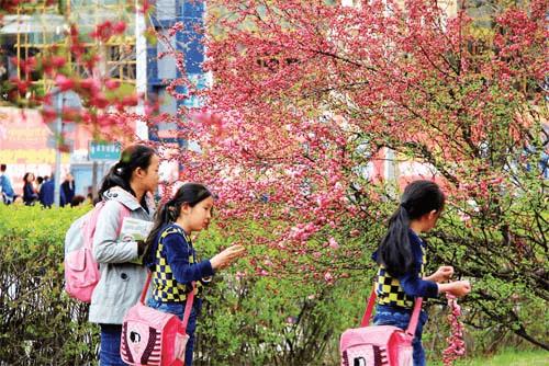 原平市民在公园里游玩