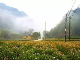 春日烟雨蒙蒙的岙底罗村,美成仙境!