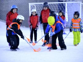 世界雪日暨石家庄第二届儿童滑雪