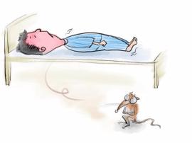 阳江口岸扎实应对马达加斯加鼠疫疫情