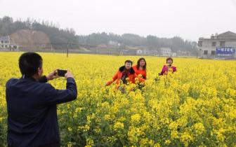 湘潭市春季乡村旅游节在湘乡市金石镇隆重开幕