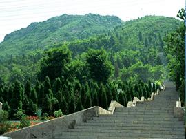 5.2亿淄博高新区要建全市最大公益性陵园