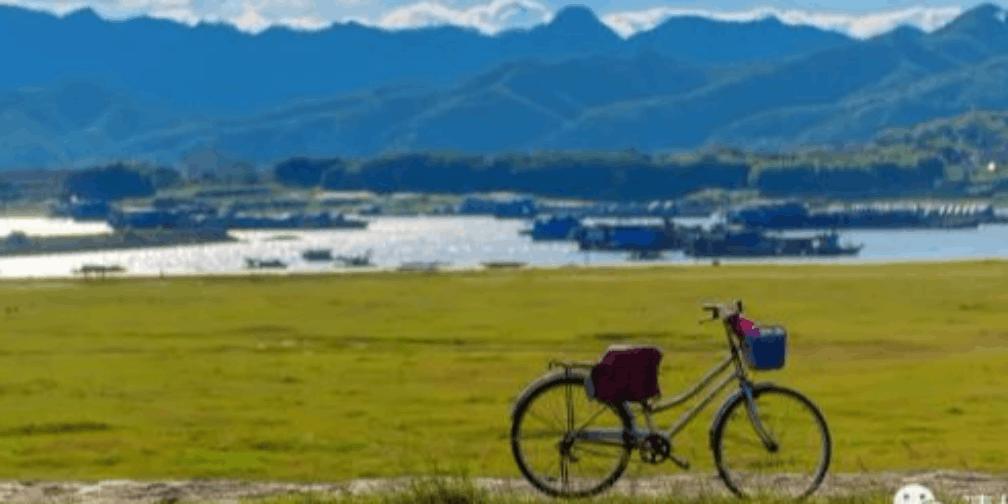 石角&源潭的金黄稻田 哪里才是清城最美的秋色?