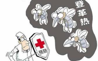 桥头:又到蚊子繁殖季 防蚊灭蚊预防登革热很重要