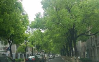 郑州市要创建国家生态园林城市 实施方案出台