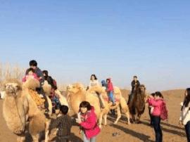 新疆冬春游增长迅猛 全疆接待游客比去年增九成