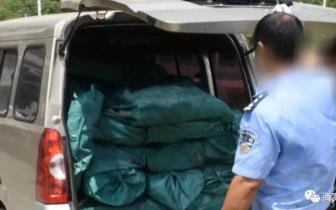 广西警方端掉一走私团伙 抓获嫌疑人29名