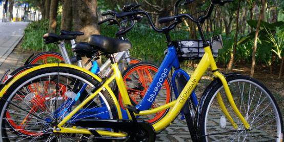 共享单车不只通勤用!运动健身,更能好心情!
