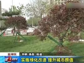视频:实施绿化改造 提升城市颜值