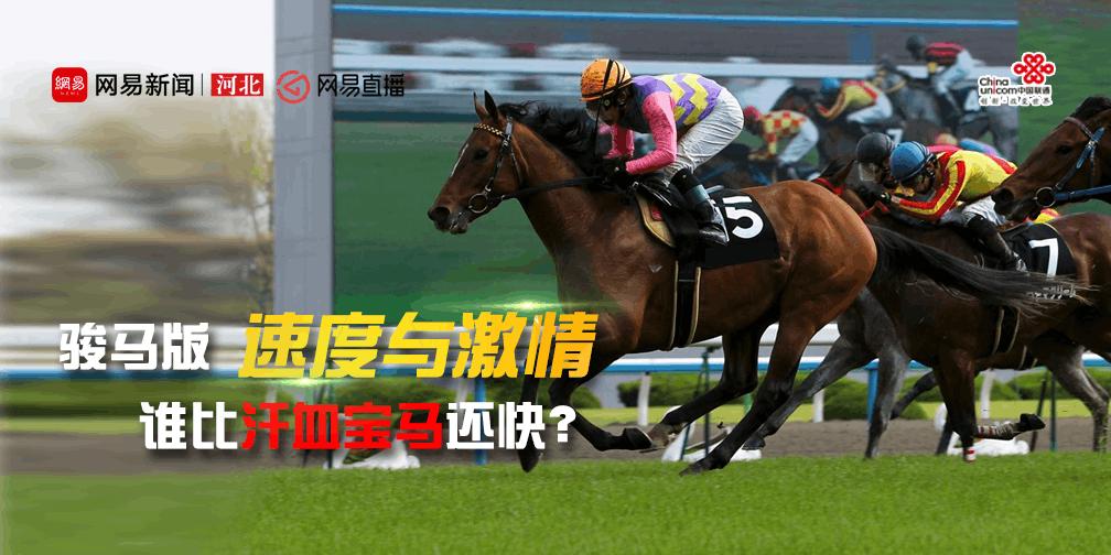 【直播】 骏马版速度与激情 谁比汗血宝马还快?