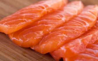 养殖鲑鱼体内寄生海虱超标 三文鱼你还敢吃么?