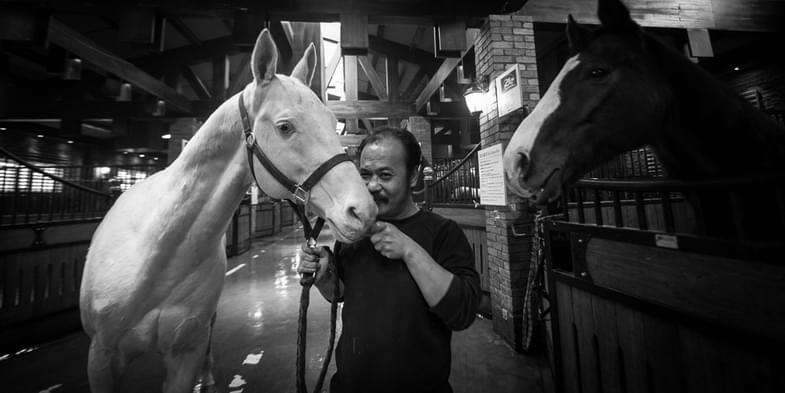 直播丨专访野马集团董事长陈志峰