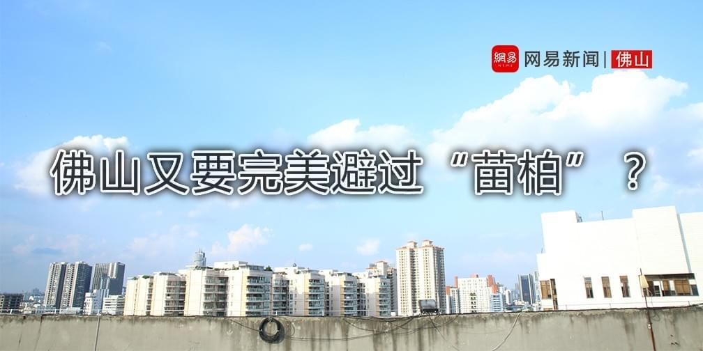 """台风""""苗柏""""来了 禅城倾盆大雨"""