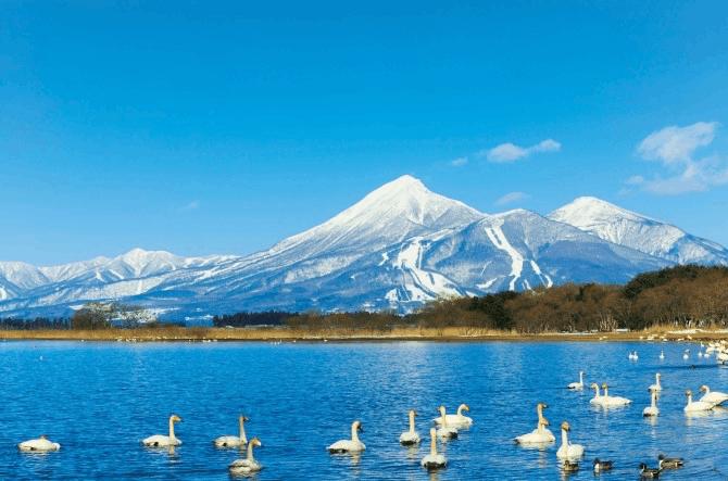 福岛旅游恢复震前92%水平 开展主题活动带动旅游