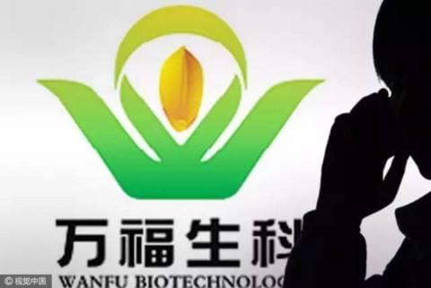 万福生科:剥离大米加工业务 涉足水产品贸易产业