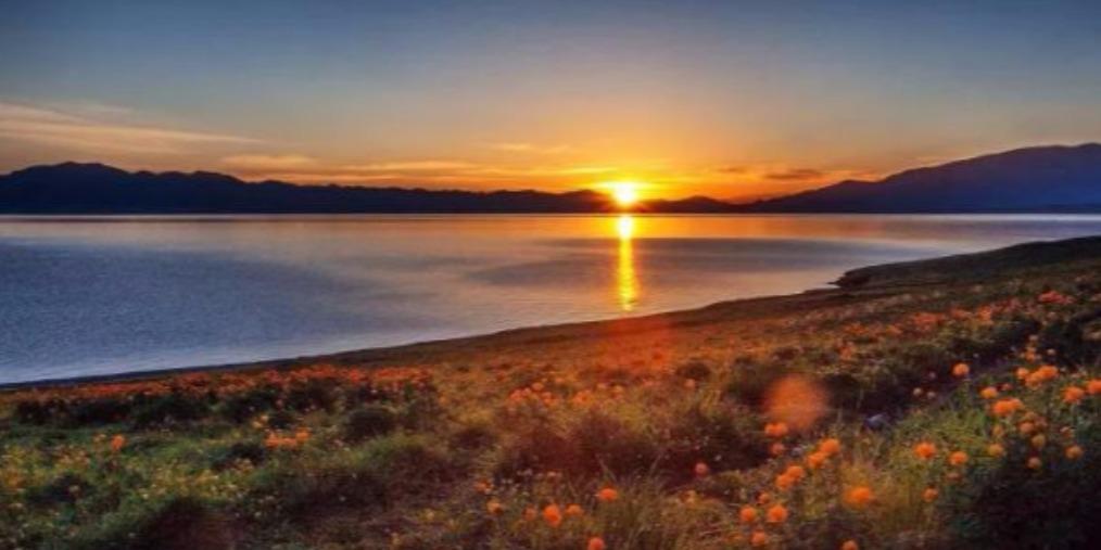 沙漠等你 一起看最美日出日落!