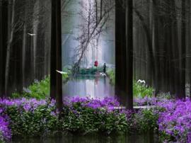 水上森林四季美景