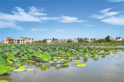 湛江力争明年建成50个新农村示范村