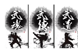 运城市协调推进中国武术文化特色小镇项目
