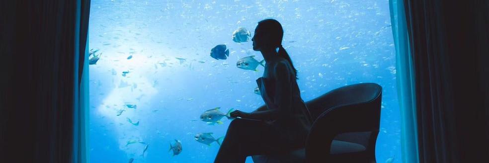 在海底入睡是什么感觉