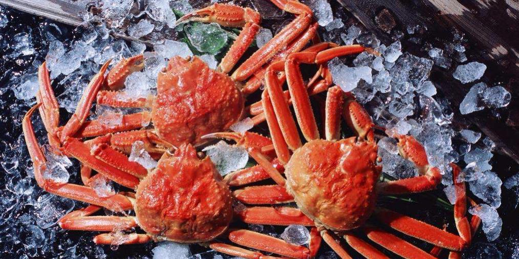 一位资深海鲜吃货经验分享:宁吃海鲜一口,不吃走兽千头