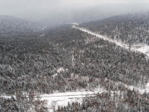 十里冰雪画廊森林景观带的雪后景色