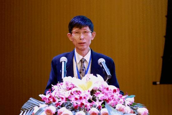 北京大学历史学系教授、三亚学院国艺研究院学术委员会主任岳庆平教授致辞