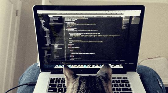 学计算机只是因为程序员工资高?