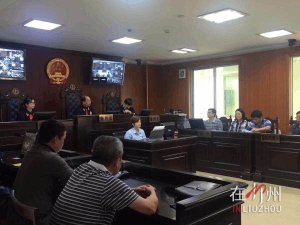 市政府成被告 副市长张建国出庭应诉