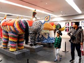 首届运城文化艺术周在并完美收官