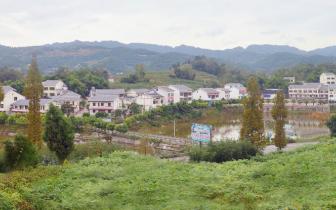 厉害了!大竹县入选全国文明城市提名城市