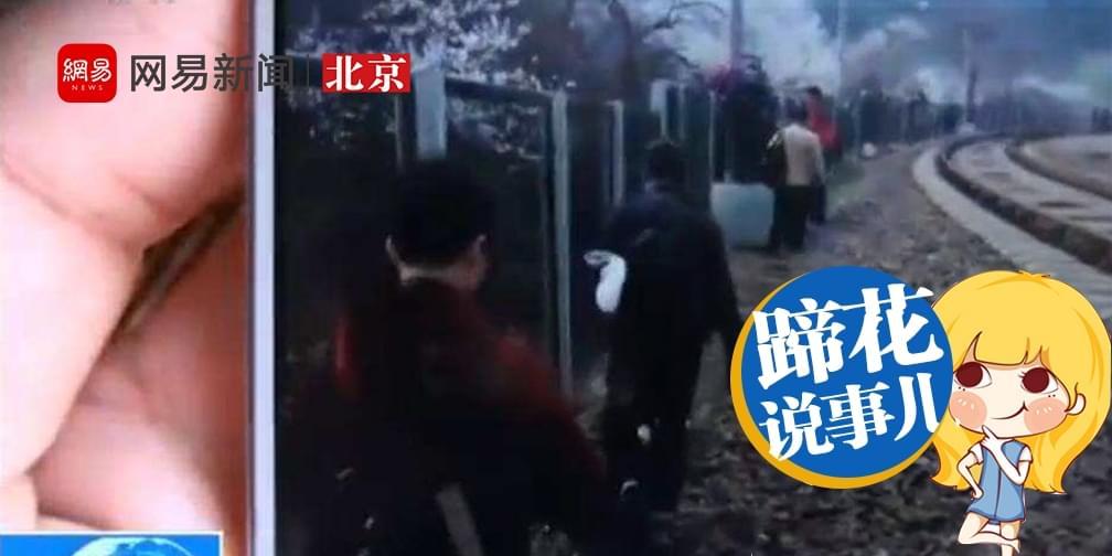 """花海列车屡被逼停,现实版""""毛驴怼大巴""""?"""