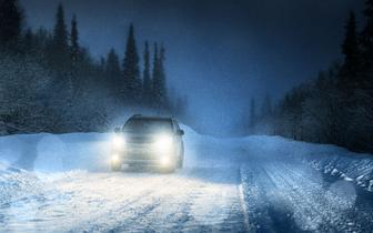 乱雪渐欲迷人眼,学会几招不惧险