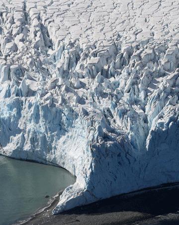 探访南极洲:这片冰冻大陆上住着谁?