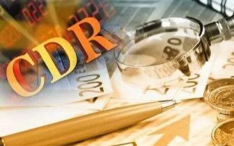 皮海洲:CDR可缓解A股市场的燃眉之急