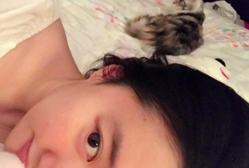刘亦菲素颜撸猫气色红润 只露半边脸慵懒迷人